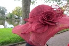img_3716-hoed